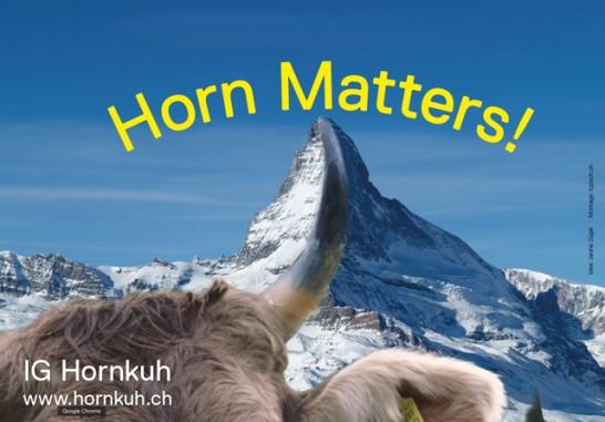 Horn matters