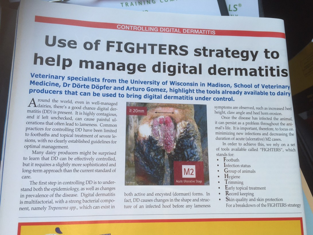 """Controling Digital Dermatitis"""