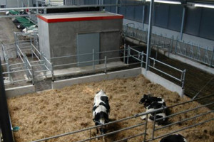 Vetvice Dairylogix barns are very succesfull!