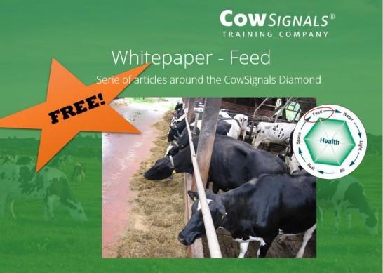 Free! Whitepaper on Feed