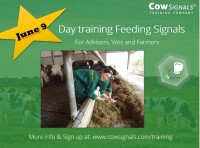 day training feeding signals.JPG