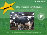 day training CowSignals.JPG