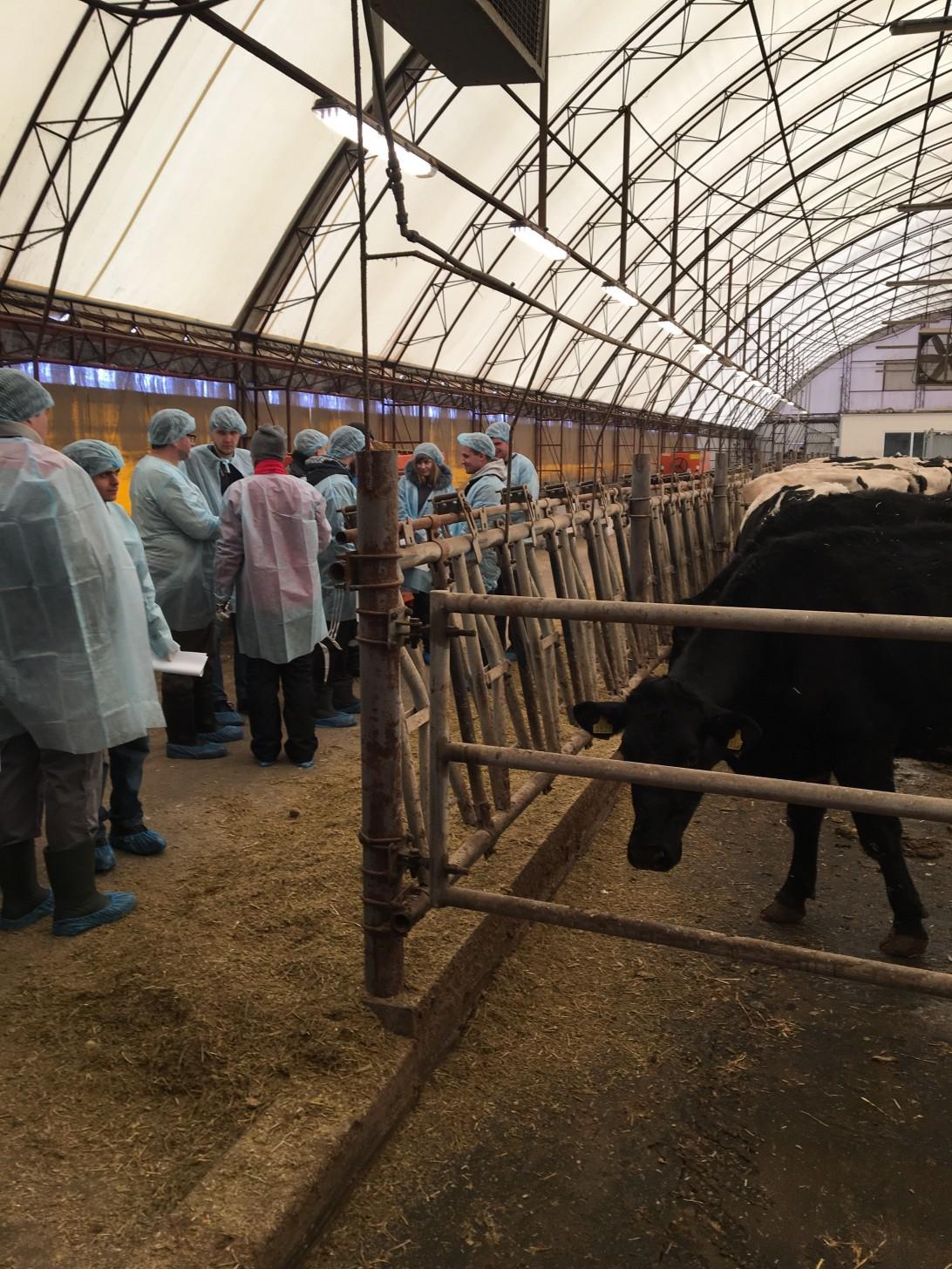First CowSignals master trainer in action in Ukraine