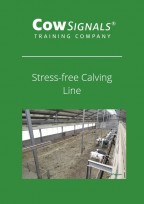 Stress-free calving line.JPG