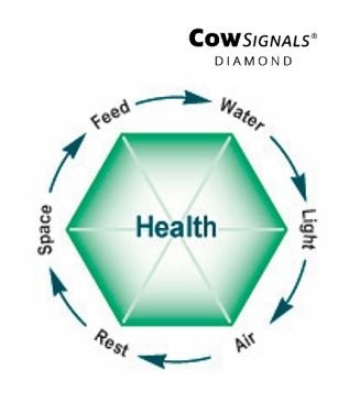 CowSignals Diamond.jpg