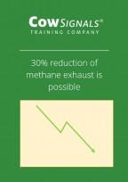 methane exhaust.JPG