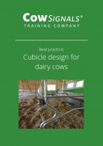 Cubicle design for dairy cows.JPG