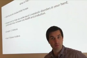 Ketosis or acidosis?
