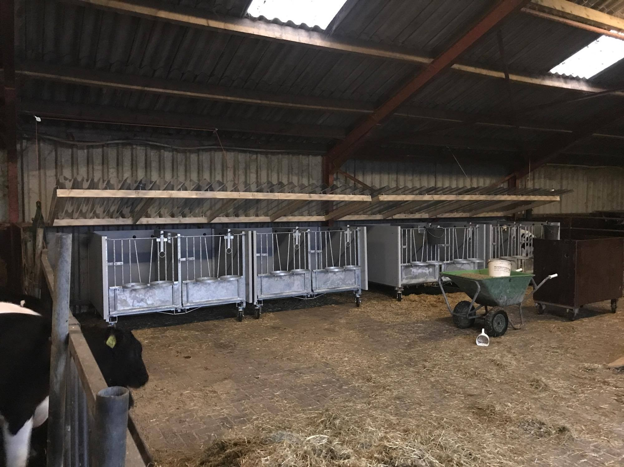 calf houses 5.jpg