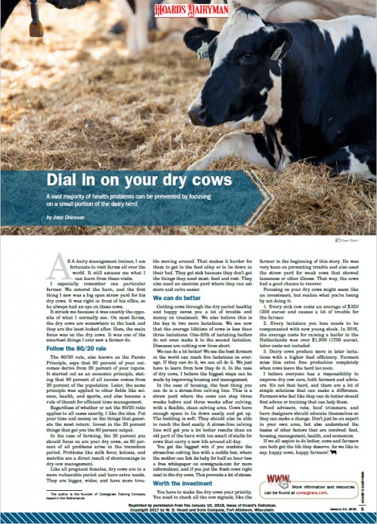 Dial in on your dry cows