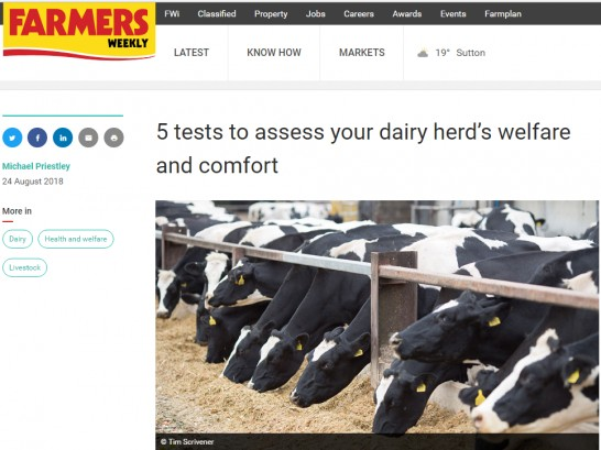 5 tests to assess your herd's welfare and comfort