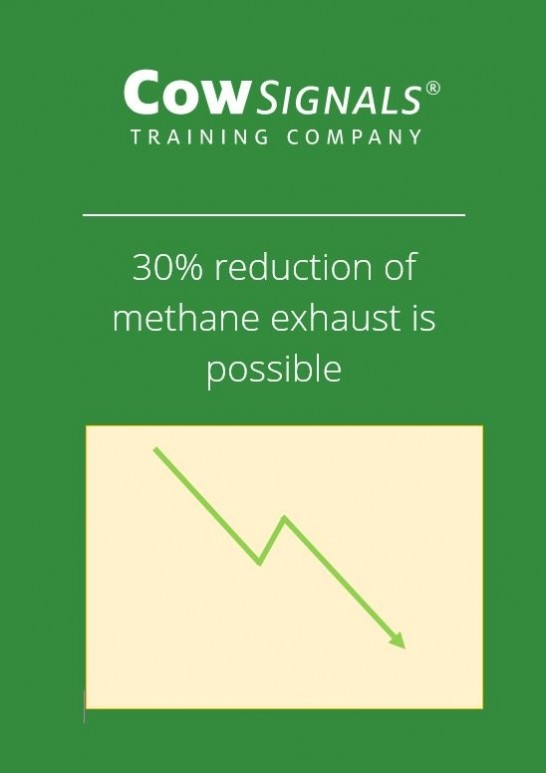 How can we reduce methane exhaust in the dairy sector?