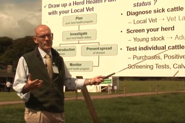 Herd expansion asks for a herd health plan