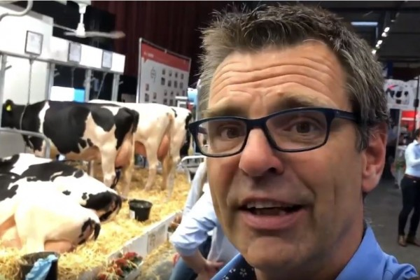 Milking time at Dutch cattle conference (NRM)