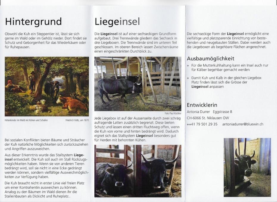 brochure Swiss island system 2.jpg