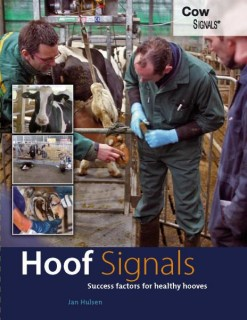 HoofSignals - English edition