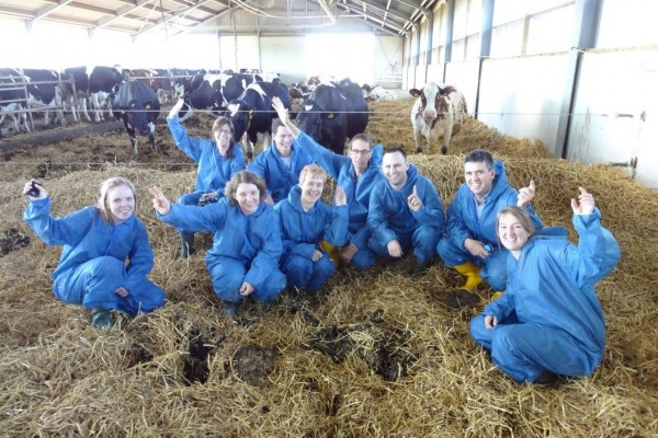 CowSignals® Workshops. Why?